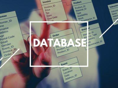 Empresa de Desarrollo y Administración de bases de datos- Software Outsourcing Castellana